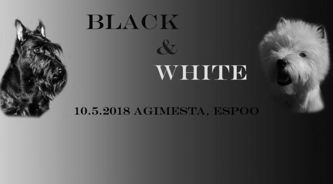 Black & White Show 10.5.2018 Espoossa